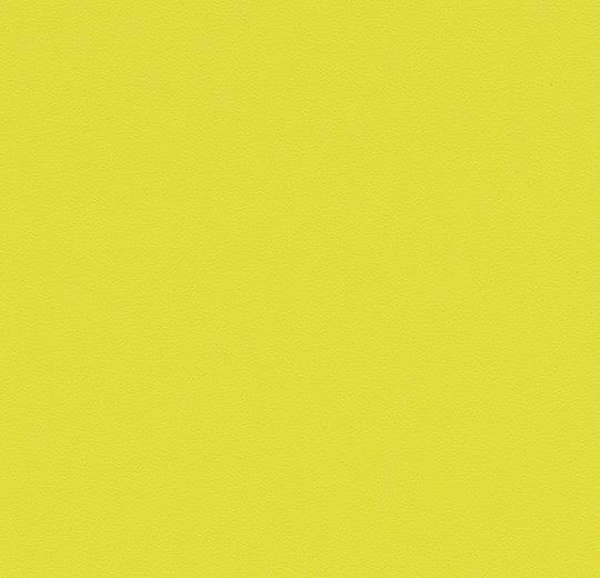 63484DR7-63484DR5 mustard