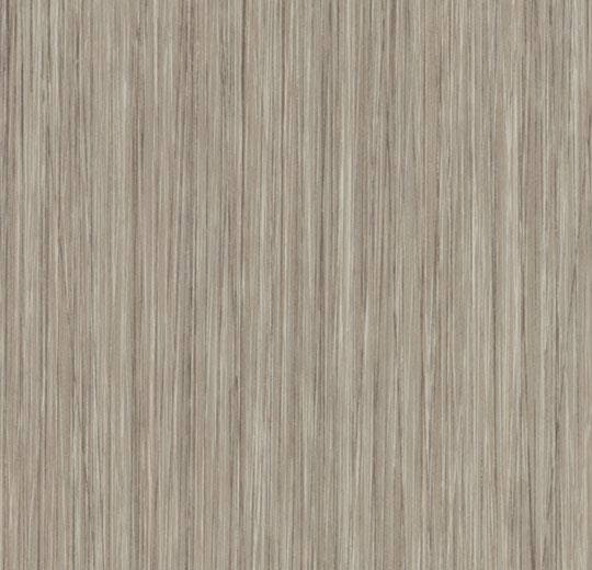 61253DR7-61253DR5 oyster seagrass
