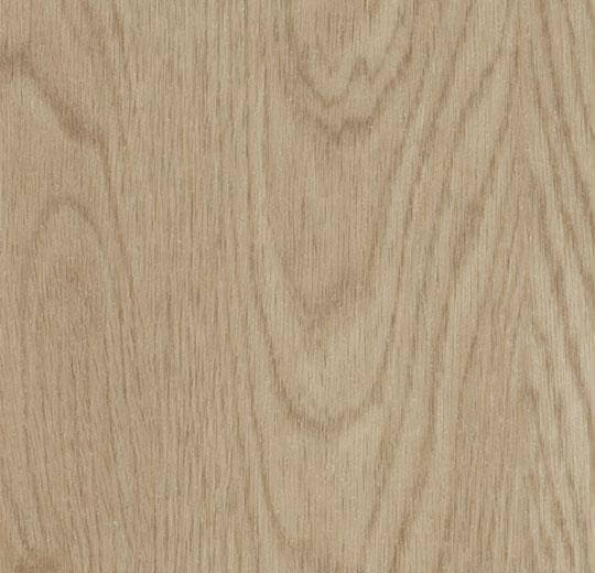 60064PZ7 whitewash elegant oak