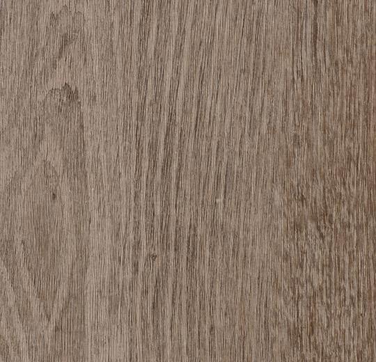 69137DR3-69137CL3 natural grey oak
