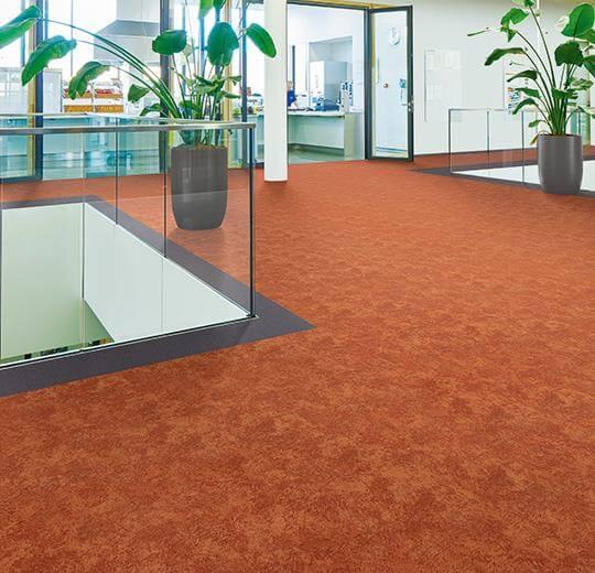 Flotex colour calgary rulo halı s290005 melon uygulama