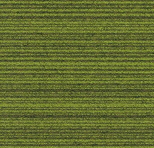 yeşil çizgili karo halı