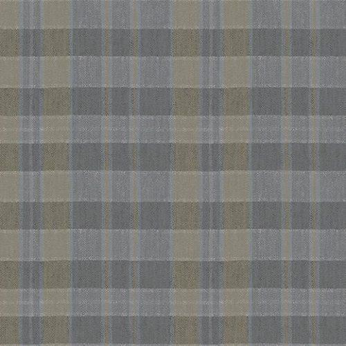 590018 Plaid Steam