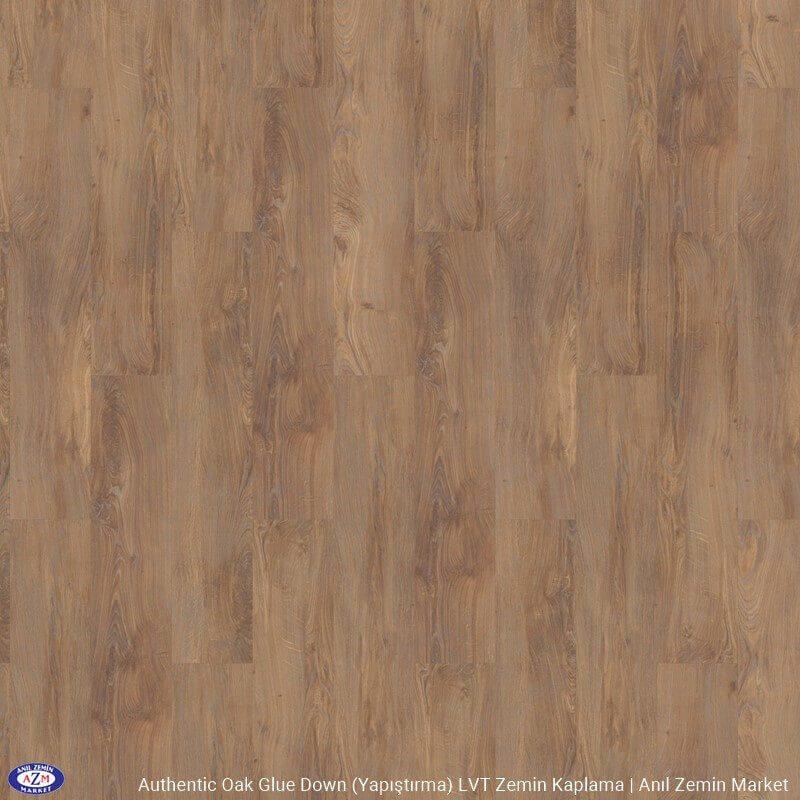56282 Water Oak