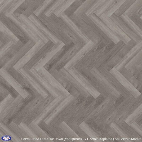 40828 Grey Sycamore