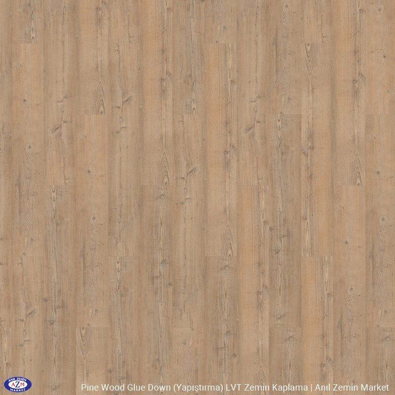 47505 Light Pine